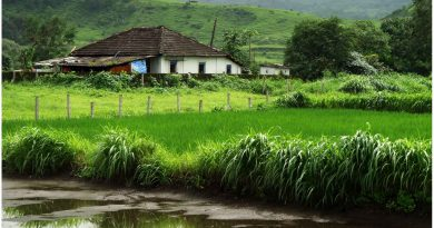 Karjat- Monsoon Picnic