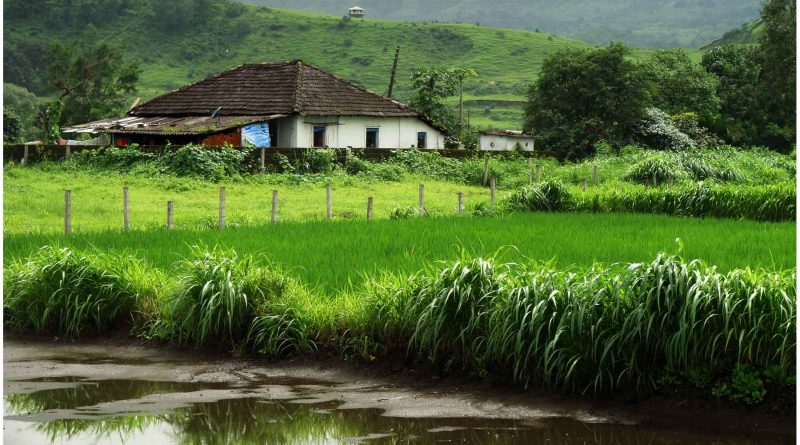 Karjat- Monsoon Picnic